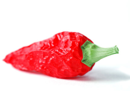 Ljute papričice kao afrodizijak