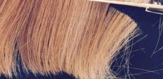 Raspored negovanja kose